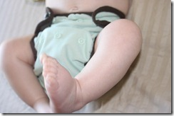 Best Bottom One Size All In Two Cloth Diaper - Front View