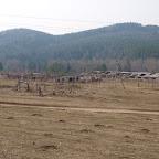 Остатки фермы в Серпиевке.