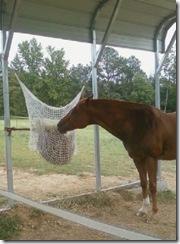 Hay Net 2