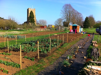 Allotment Wardinton UK 2