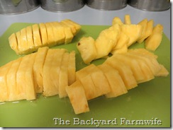 fresh pineapple sorbet - The Backyard Farmwife