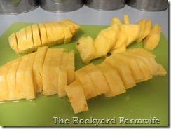 fresh pineapple sorbet - The Backyard Farmwife