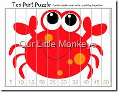 ten part puzzle 2