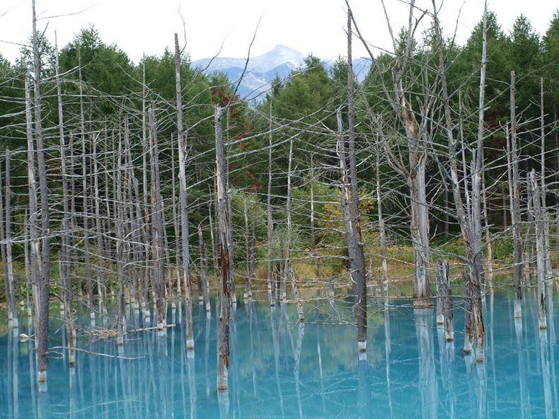 blue-pond-7