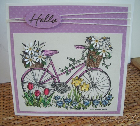 Northwoods Bicycle, Punch Flowers, Watercolor, Scrapadoodle, Carla's Scraps (9)