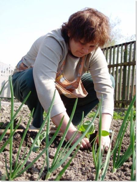 woman working in kitchen garden