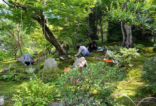 43 - Glória Ishizaka - Arashiyama e Sagano - Kyoto - 2012