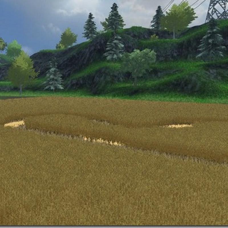 Farming simulator 2013 - Rape texture v 1.0