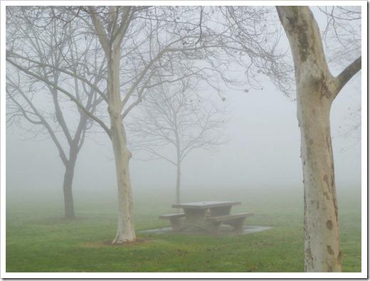 121211_fog_32
