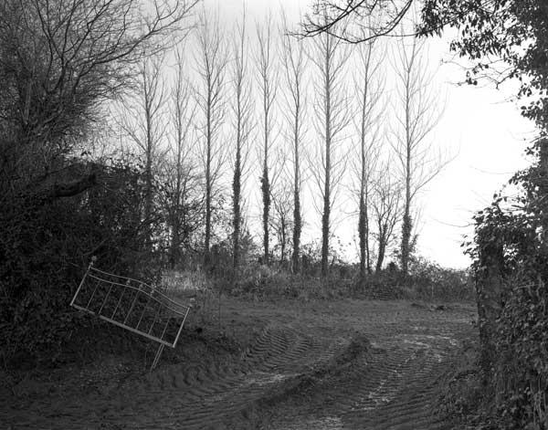 Horner,-Nr-Totnes,-Devon-1.jpg
