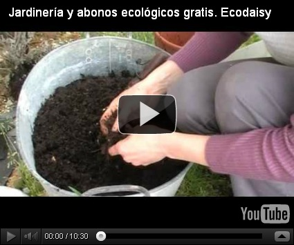 Jardiner a online dise o y decoracion de jardines de casas Jardineria online