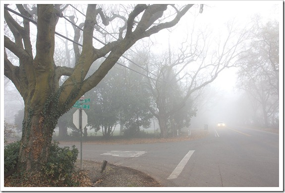 111220_fog_intersection