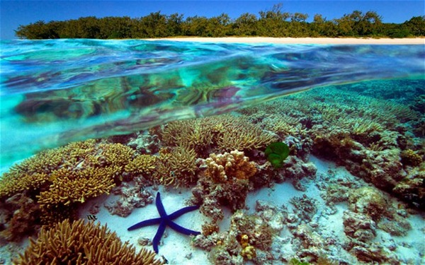 great BarrierReef Australia