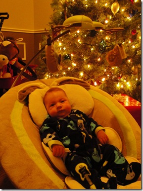 7.  Knox in front of tree