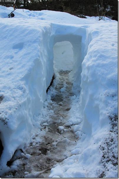 1-snow-tunnel