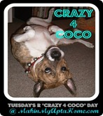 crazy 4 coco log0_thumb[2]