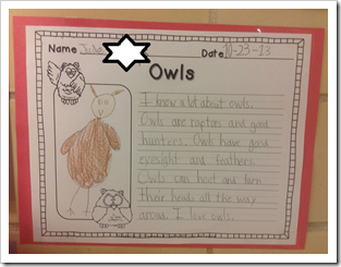 Owl Writing2