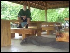 Indonesia, Komodo Island, 8 January 2013 (17)