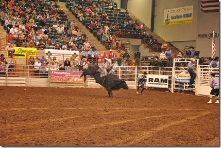 Georgia national rodeo (42)