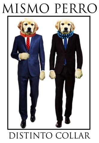 mismo perro