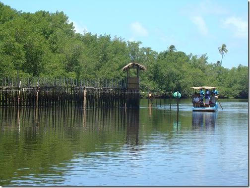 Cativeiro Rio Tatuamunha Peixe-Boi Alagoas
