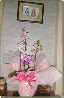 2010_04280059