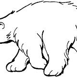 polar-bear-coloring-page.jpg