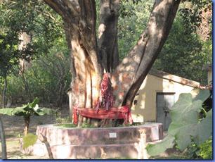 india 2011 2012 678