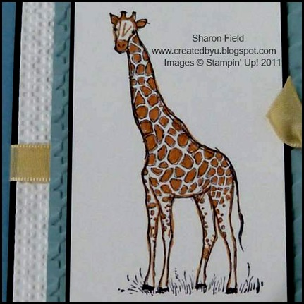 UDI49, Zoo_Review, Color_Challenge, Jacksonville_Zoo_And_Gardens, Giraffe, Sharon_Field, Createdbyu_Blogspot