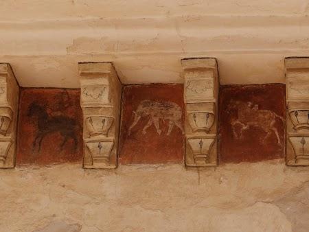 31. Kamasutra in Jaipur.JPG