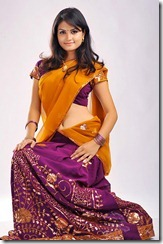 madhulika-telugu-actress_in_saree