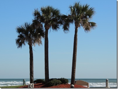 Florida 033