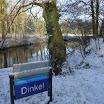 Dinkel in de sneeuw - www.LandgoedDeKniep.nl