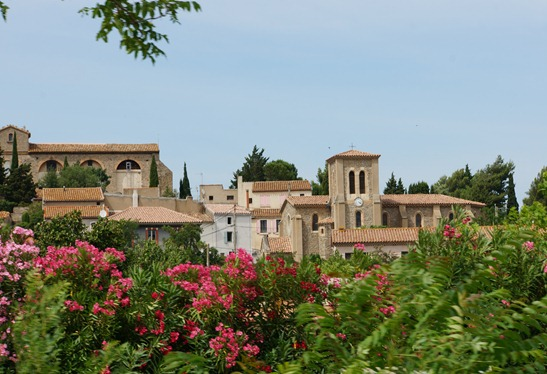 Views from Canal Du Midi
