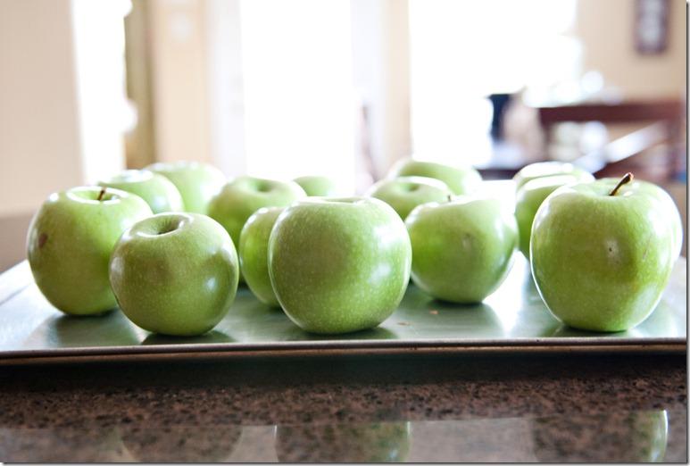 Apples_0017