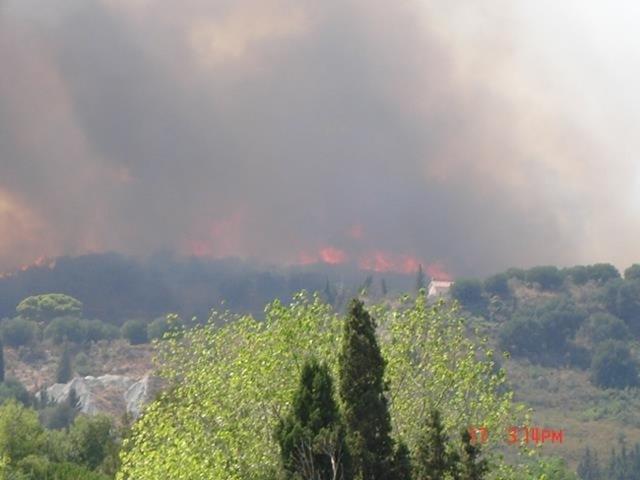 Υπό μερικό έλεγχο η φωτιά στην Παλική (ανανεωμένο)[φωτογραφίες – video]