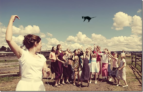 cat-toss-weddings-13