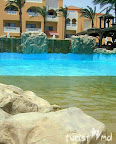 Фотогалерея отеля Albatros Aqua Blue Resort 4* - Хургада