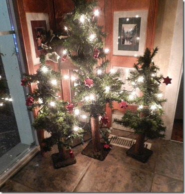 2012 Christmas 005