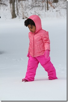 Snow 301