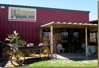 2013-04-06 - AZ, Yuma - Lunch at The Farm -009
