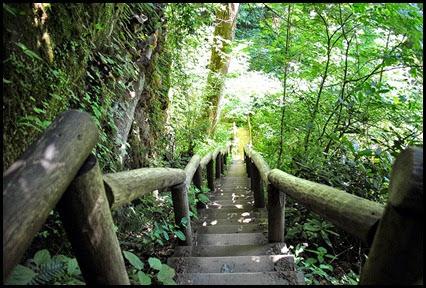 46 - Battleship Rock Trail- one more steep decline