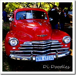 005 Car Show at Kloof SPCA