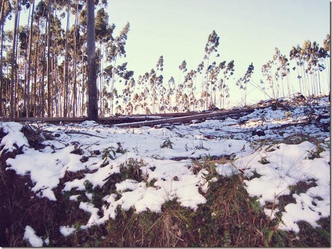 rio do sul neve_02