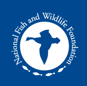 national fish and wildlife foundation, fedex, environment, sustainability, fedex corp