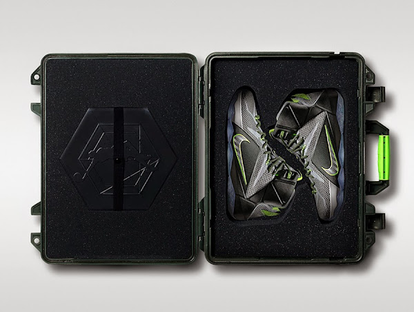 Limited 8220Dunk Force8221 LeBron 12 in Special Box to Drop in China