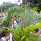 Caminhada de Ramos 2011