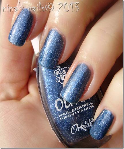 Orkide Olivia #94.JPG 2