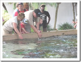 Florida vacation Epcot rich terry ronnie twins feeding rays2