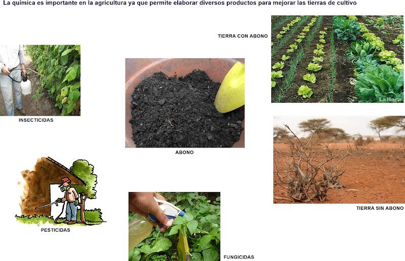 La quimica y su importancia en la agricultura